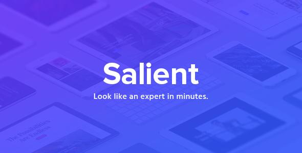Salient Theme Screenshot - دانلود رایگان تم و پلاگین